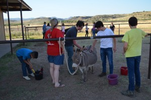 SC - Horsemanship 2