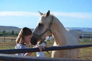 Horsemanship Camp 1