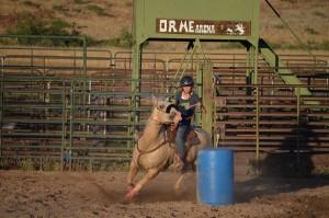 Horsemanship Camp - A